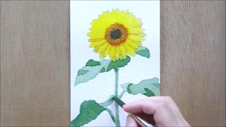 ひまわり 塗り絵手順10