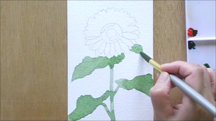 ひまわり 塗り絵手順2