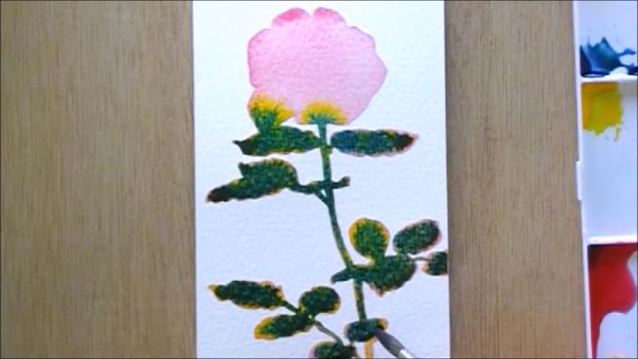 バラ 塗り絵手順4