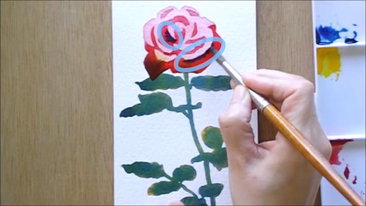バラ 塗り絵手順7
