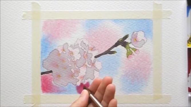 桜 塗り絵手順11
