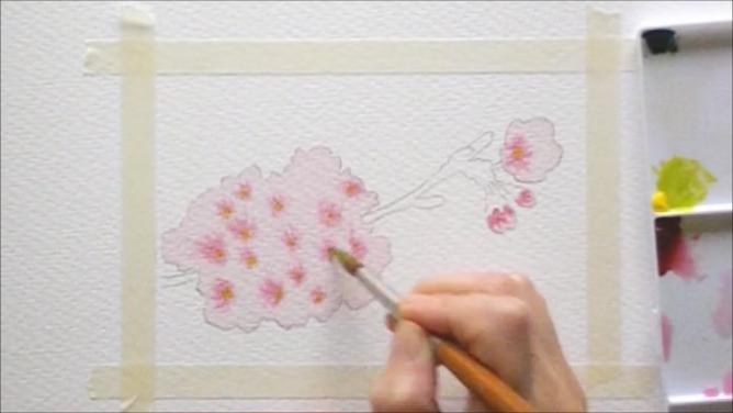 桜 塗り絵手順5