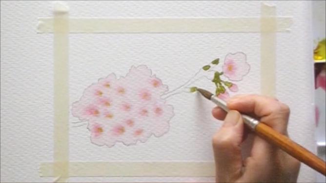 桜 塗り絵手順6